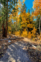 Enroute to Fremont Lake  October 10, 2014