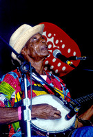 Banjo Player, Strawberry Spring, 1991