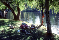 Birch Lake Afternoon, ​Strawberry Music Festival, Spring, 1986